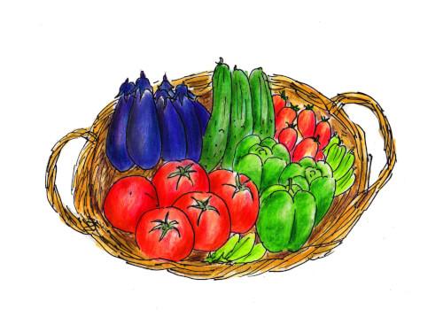 新鮮野菜3