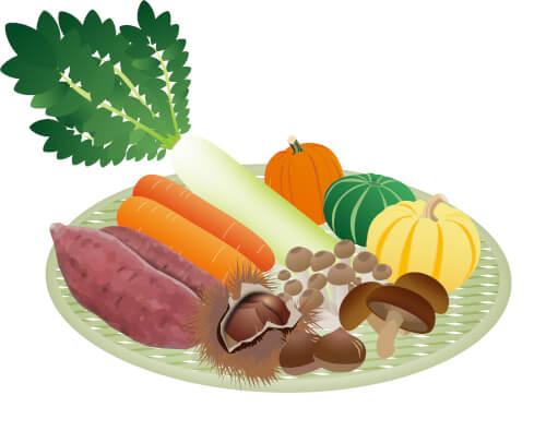 新鮮野菜4