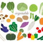 新鮮野菜で美味しい野菜の見分け方とその選び方まとめ!