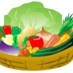 野菜の保存方法と冷凍、冷蔵、常温別の賞味期限