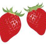 新鮮で美味しい果物の見分け方とその選び方まとめ!