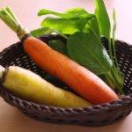 夏に種まきや苗を植える野菜の種類や栽培方法