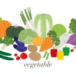 春に種まきや苗を植える野菜の種類や栽培方法