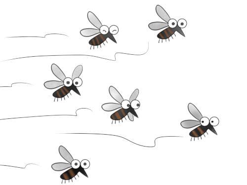蚊を増やさない