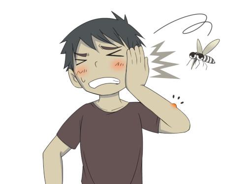 蚊が捕まらない